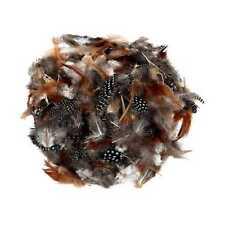Plumes naturelles 14g mixtes plumes Artisanat gros repéré livraison gratuite