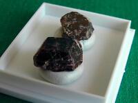 Granat, zwei Einzelkristalle aus Brasilien, in Dose, (ZP133)