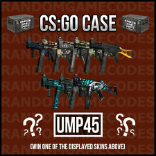 CSGO Random UMP-45 Skin - Counter-Strike Global Offensive - CHEAPEST