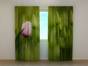 3D Photo Curtain Printed First Pink Tulip Flower By Wellmira Made to Measure