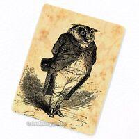 Owl Gentleman Deco Magnet, Decorative Fridge Antique Victorian Illustration Gift