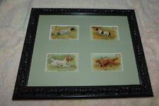 4 Dwight's Soda Bird Dog Cards Framed English & Irish Setters/Clumber/Pointer