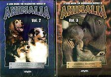 Animalia Vol. 2 & Animalia Vol. 3 - 2 NEW DVDs