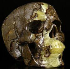 """Huge 7.3"""" DRAGON SEPTAR Carved Crystal Skull,Super Realistic,Crystal Healing#411"""