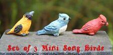 3 pc MINIATURE SONG BIRDS for FAIRY GARDEN DOLLHOUSE Oriole Cardinal Blue Jay