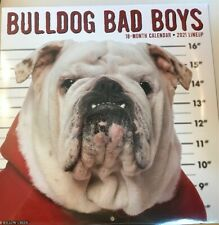 Bulldog Bad Boys (dog breed calendar) 2021 Wall Calendar(Free Shipping) New