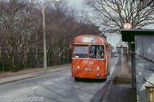 London Transport RF505 Weybridge Station Feb 1979 Bus Photo
