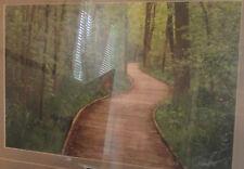 Framed Fine Art Nature Photography Print  MEANDERING BOARDWALK Drake Fleege