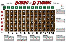 Dobro Fretboard Wall Chart Resonator Guitar Poster D Tuning Notes Chords 11x17