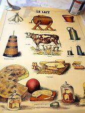Deyrolle Vintage Agriculture Posters