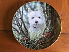 """Danbury Mint """"Hide and Seekl"""" West Highland Terriers By Paul Doyle 8"""" Plate"""