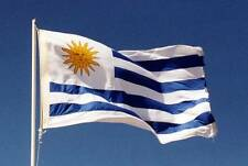 Giant National Rugby World Cup Flag Of Uruguay