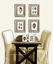 Bird Egg Art Prints set of 4 Unframed Home Decor Wall Art
