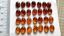 Cognac Baltic amber oval cabochon  10mm x 8mm hand cut natural best colours