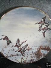 Danbury Mint In To Feed David Maass Ducks Taking Flight 1988 Ltd Ed Plate