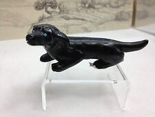 Dachshund jett table fetish Cody Nastaccio stone Zuni dash Hot dog dachsie dash