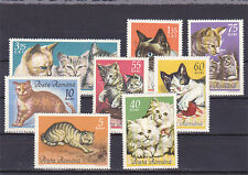 STAMPS 1965, cats, Persian, Siamese, MNH, pixie, Romania