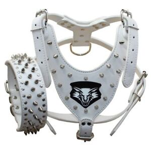 Spiked Studded Leather Dog Collar Harness set for Medium & Large Dogs Pit Bull
