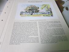 Hamburg Archiv 15 Weltstadt 15175 Alsterpark von Ivo Hauptmann