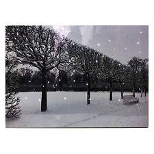 Christmas Tapestry Winter Snow Scene Fibre Optic Lights Wall Hanging Battery Opp