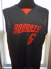Charlotte Bobcats grey 6th Man jersey L Sports Apparel Basketball Clothing shirt