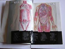 Atlas du Corps Humain en trans-vision - guide médical de la famille