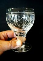 Beautiful Stuart Tamara Crystal Water Glass