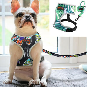 Breathable Small Dog Harness with Leash No Pull Dog Vest for Small Medium Dogs