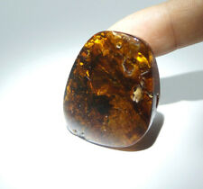 Pandent With Plant Inclusion Natural Baltic Amber Polished Gemstone
