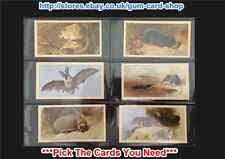 Player'S - Grandee British Mammals 1982 (Imp. Tob. Ltd) (Vg) *Please Select*
