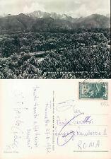 MARINA DI PIETRASANTA (FIUMETTO) LA SUA PINETA  (rif.fg.4552)