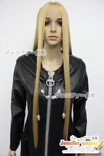 KINGDOM hearts 2 Organizati on Xiii Vexen cosplay wig 2