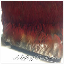 Natural RED pheasant feathers on fringe/ribbon/trim(price for 30cm) craft