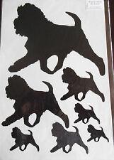 Affenpinscher vinyl stickers/ car decals/ window decals