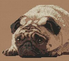 "Pug Puppy  Dog Complete Counted Cross Stitch Kit 8"" x 7"" (20 x 18)cm 14 Count"
