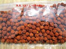 Rudraksha Rudraksh 5 Mukhi Loose 8mm Beads Yoga Meditation Wholesale Lot of 111