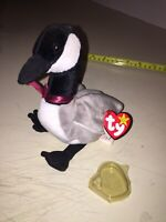 Rare Retired Ty Beanie Baby Loosy Goose 1998 *tag errors