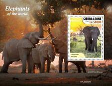 Sierra Leone - 2020 Elephants of the World - Stamp Souvenir Sheet - SRL200525b