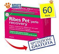 Ribes Pet Recovery - 60 perle - Integratore per cani e gatti Cura le dermatiti