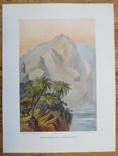 HAECKEL: Large Chromolithographic Print Worlds End Ceylon Sri Lanka - 1905