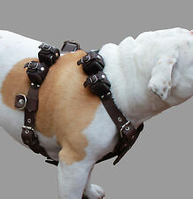 "Real Leather Weighted Pulling Dog Harness Exercise Training 6 Lb, 28""-35"" Chest"