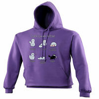 Catriculum Vitae HOODIE hoody birthday gift fashion cat kitty kitten cute funny