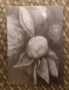 "ACEO ORIGINAL ""PEONY BUD"" RKS Art studios GRAPHITE FLORAL FLOWER BLACK AND WHITE"