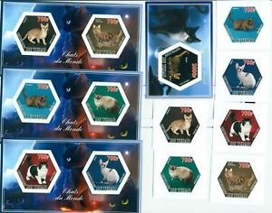 DOMESTIC CATS cat SET 6 hexagon stamps + 4 s/s  Tchad #tchad2014-79s IMPERF