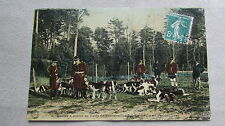 CPA 77. Chasse à courre en forêt de Fontainebleau. La meute au rendez-vous.