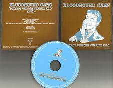 BLOODHOUND GANG Foxtrot Uniform Charlie Kilo 2005 PROMO DJ CD single GEFR 11500