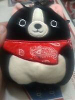 """squishmallow black dogs with bandana bundle tommy 5"""" and teddy 5"""" new"""