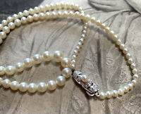 Vintage Saltwater Cultured Pearl Necklace, Graduated with Silver & Pearl Clasp
