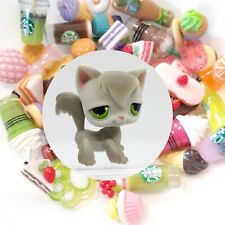 Authentic Littlest Pet Shop Longhair Angora Cat # 20 + �*Suprise Food Items*�