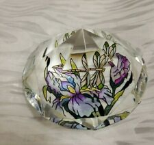 AMIA Hand Painted Diamond Dragonfly Glass Paperweight